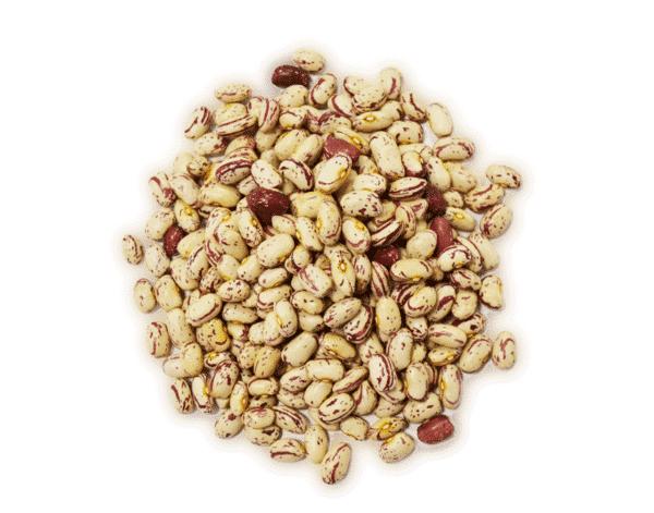 Alubia pinta a granel en nuestra tienda online de frutos secos secofrut.com
