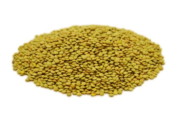 Lenteja verdina a granel en nuestra tienda online de frutos secos secofrut.com