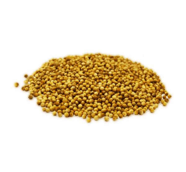 Cilantro a granel en nuestra tienda online de frutos secos secofrut.com