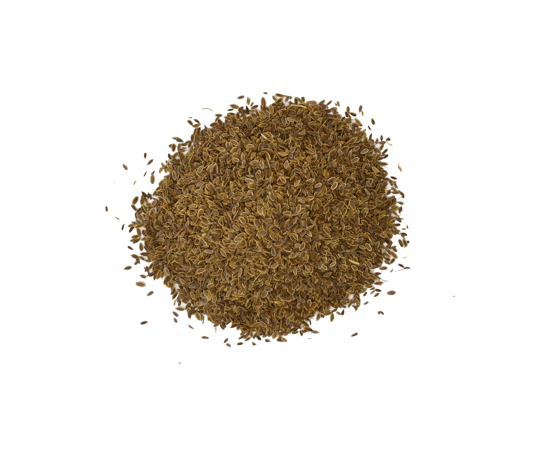 Eneldo semillas a granel en nuestra tienda online de frutos secos secofrut.com