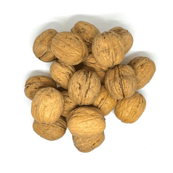 Nueces con cáscara chilenas a granel en nuestra tienda online de frutos secos secofrut